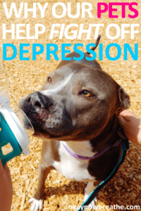 Why Our Pets Help Fight Off Our Depression