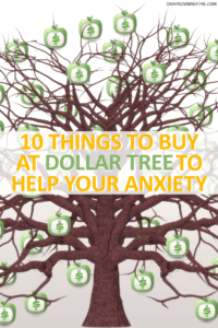 10 Things to Buy at Dollar Tree to Help Your Anxiety