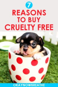 Small puppy in a white and red polka dot mug. Text says 7 reasons to buy cruelty free