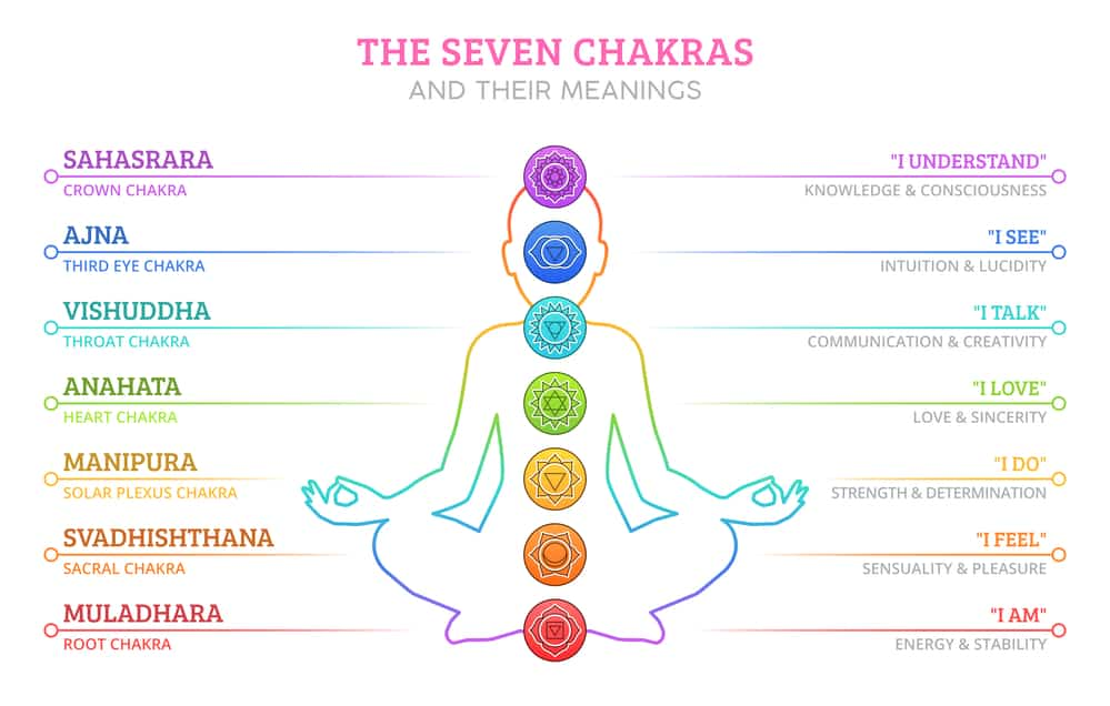 An infographic of the 7 main chakras. On the left is says the names of the chakras. On the right, it describes them.